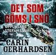 """""""Det som göms i snö"""" av Carin Gerhardsen"""
