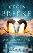 """""""Avgrunnsblikk - kriminalroman"""" av Jørgen Brekke"""