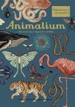 """""""Animalium - bli med inn i dyrenes verden"""" av Katie Scott"""