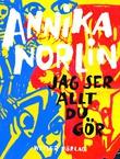 """""""Jag ser allt du gör - Noveller"""" av Annika Norlin"""