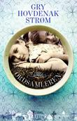 """""""Ordsamleren roman"""" av Gry Hovdenak Strøm"""
