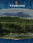 """""""Tsunami!"""" av Anne Rooney"""