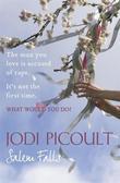 """Salem Falls"" av Jodi Picoult"