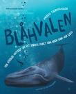 """""""Blåhvalen"""" av Andreas Tjernshaugen"""