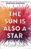 """""""The sun is also a star"""" av Nicola Yoon"""