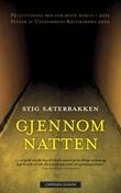 """""""Gjennom natten - roman"""" av Stig Sæterbakken"""