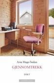 """""""Gjennomtrekk"""" av Arne Hugo Stølan"""
