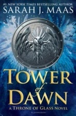 Omslagsbilde av Tower of dawn