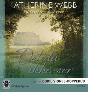 """""""Det du ikke ser"""" av Katherine Webb"""