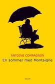 """""""En sommer med Montaigne"""" av Antoine Compagnon"""