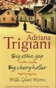 """Big Stone Gap ; Big cherry holler ; Milk glass moon"" av Adriana Trigiani"