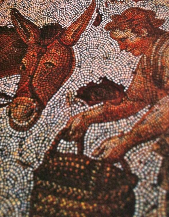 """""""Det gyldne esel"""" av Apuleius"""