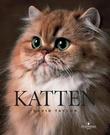 """""""Katten"""" av David Taylor"""
