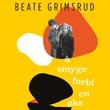 """""""Å smyge forbi en øks"""" av Beate Grimsrud"""