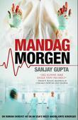 """""""Mandag morgen en roman"""" av Sanjay Gupta"""