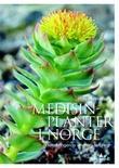 """""""Medisinplanter i Norge helsebringende vekster i naturen"""" av Rolv Hjelmstad"""
