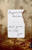 """""""Det gode vi ikkje gjer - roman"""" av Ragnhild Kolden"""