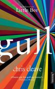 """Gull"" av Chris Cleave"