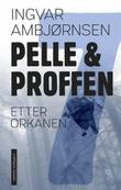 """""""Etter orkanen"""" av Ingvar Ambjørnsen"""