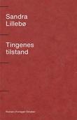"""Tingenes tilstand roman"" av Sandra Lillebø"