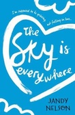 """The sky is everywhere"" av Jandy Nelson"