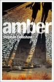 """""""Amber"""" av Stephan Collishaw"""