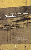 """""""Sander - roman"""" av Terje Holtet Larsen"""
