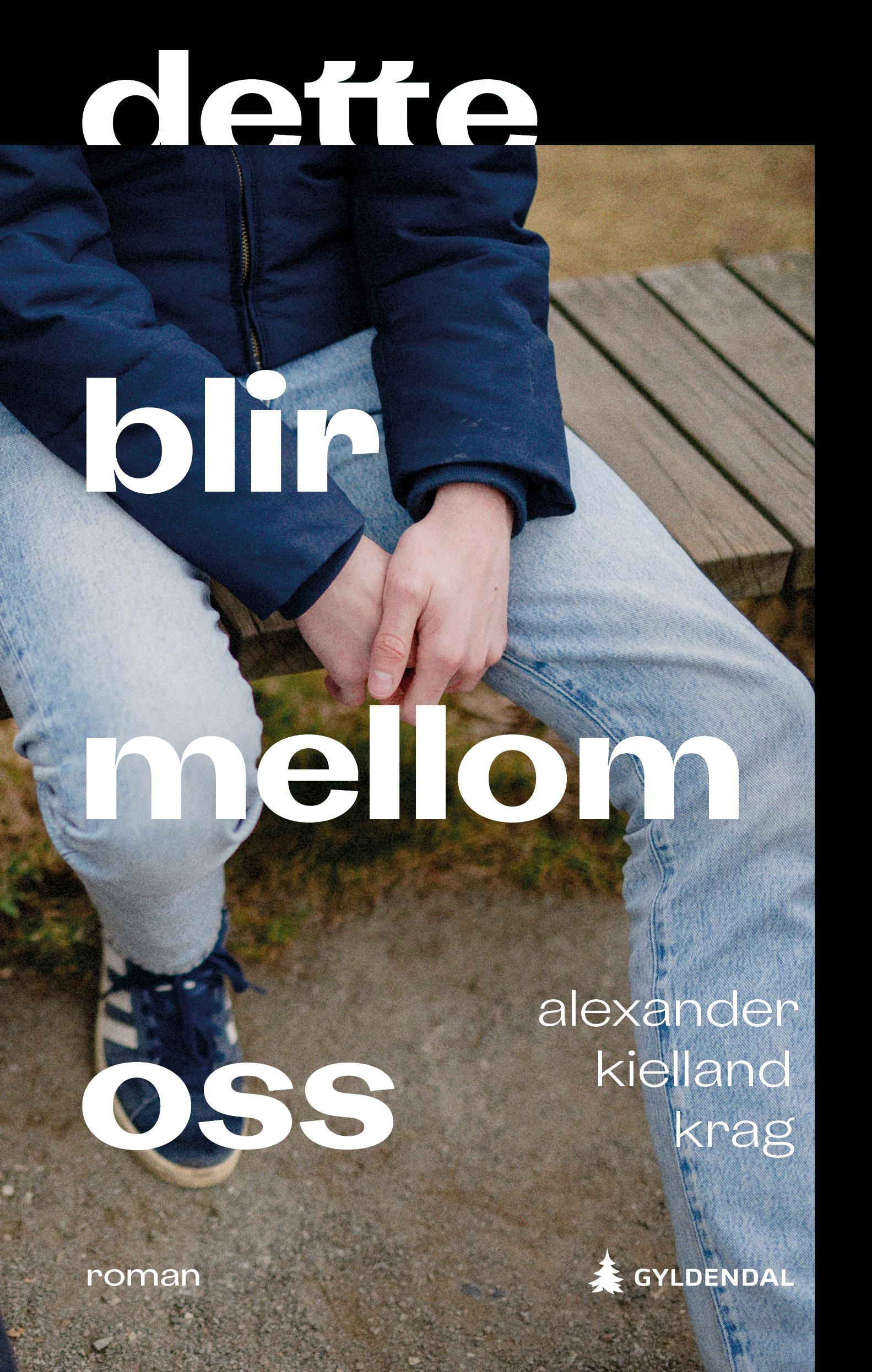 """""""Dette blir mellom oss - roman"""" av Alexander Kielland Krag"""