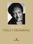 """""""Oslo i skumring"""" av Olav Angell"""
