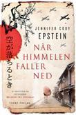 """""""Når himmelen faller ned en roman"""" av Jennifer Cody Epstein"""