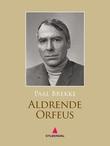 """Aldrende Orfeus - roman"" av Paal Brekke"