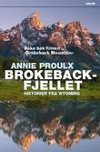 """""""Brokeback-fjellet - historier fra Wyoming"""" av Annie Proulx"""