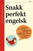 """""""Snakk perfekt engelsk"""" av Thomas A. Fagerlid"""