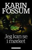 """""""Jeg kan se i mørket roman"""" av Karin Fossum"""