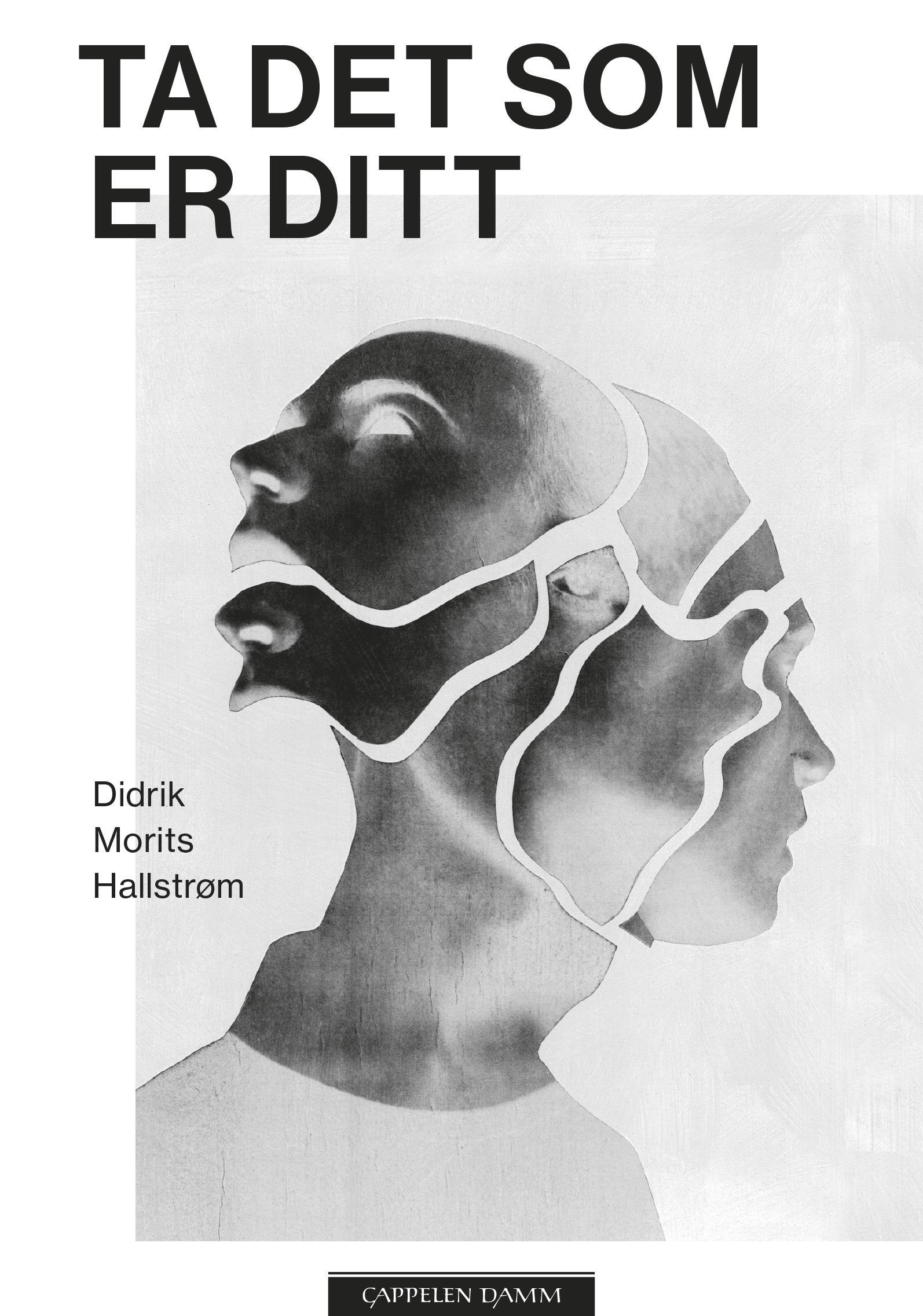 """""""Ta det som er ditt - roman"""" av Didrik Morits Hallstrøm"""