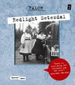 """Redlight Setesdal"" av Sigmund Falch"