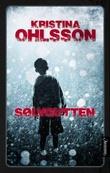"""""""Sølvgutten"""" av Kristina Ohlsson"""