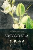 Omslagsbilde av Amygdala