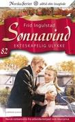 """""""Ekteskapelig ulykke"""" av Frid Ingulstad"""