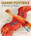 """Harry Potter - a history of magic"""