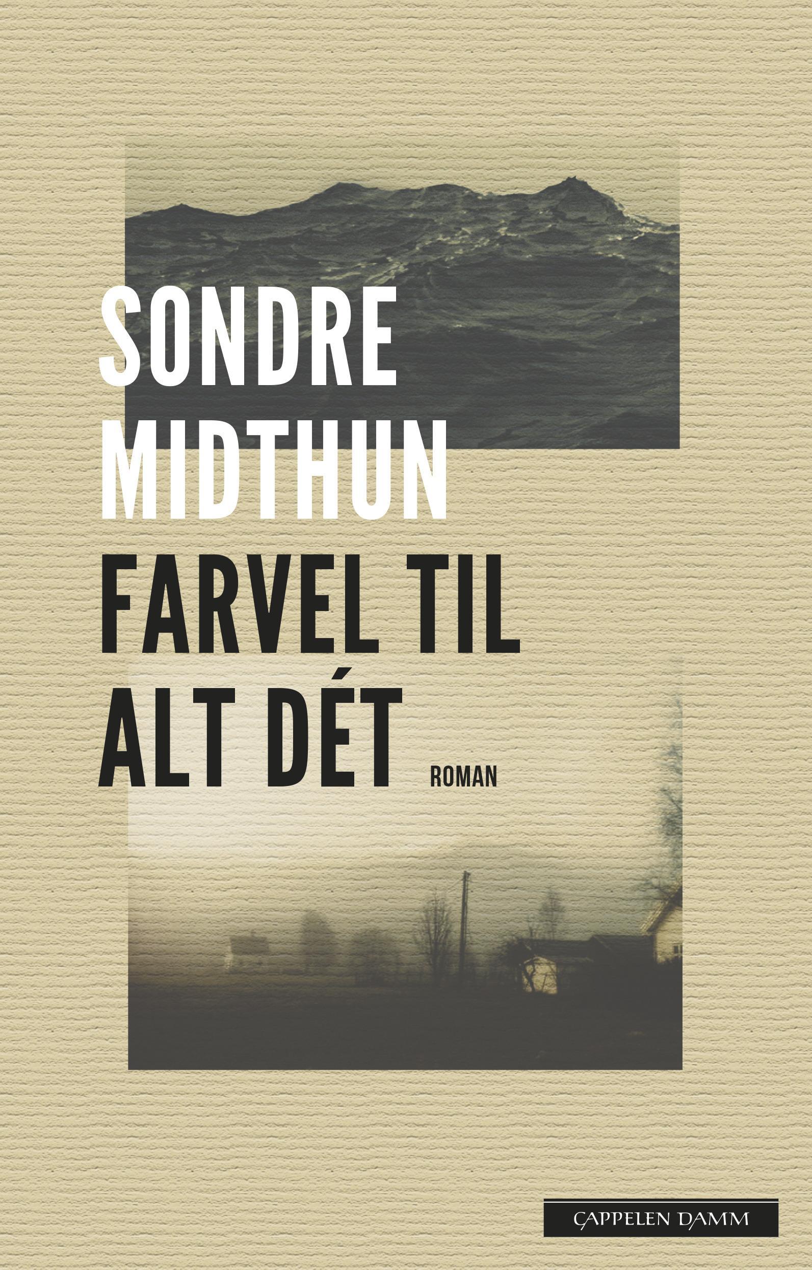 """""""Farvel til alt dét"""" av Sondre Midthun"""