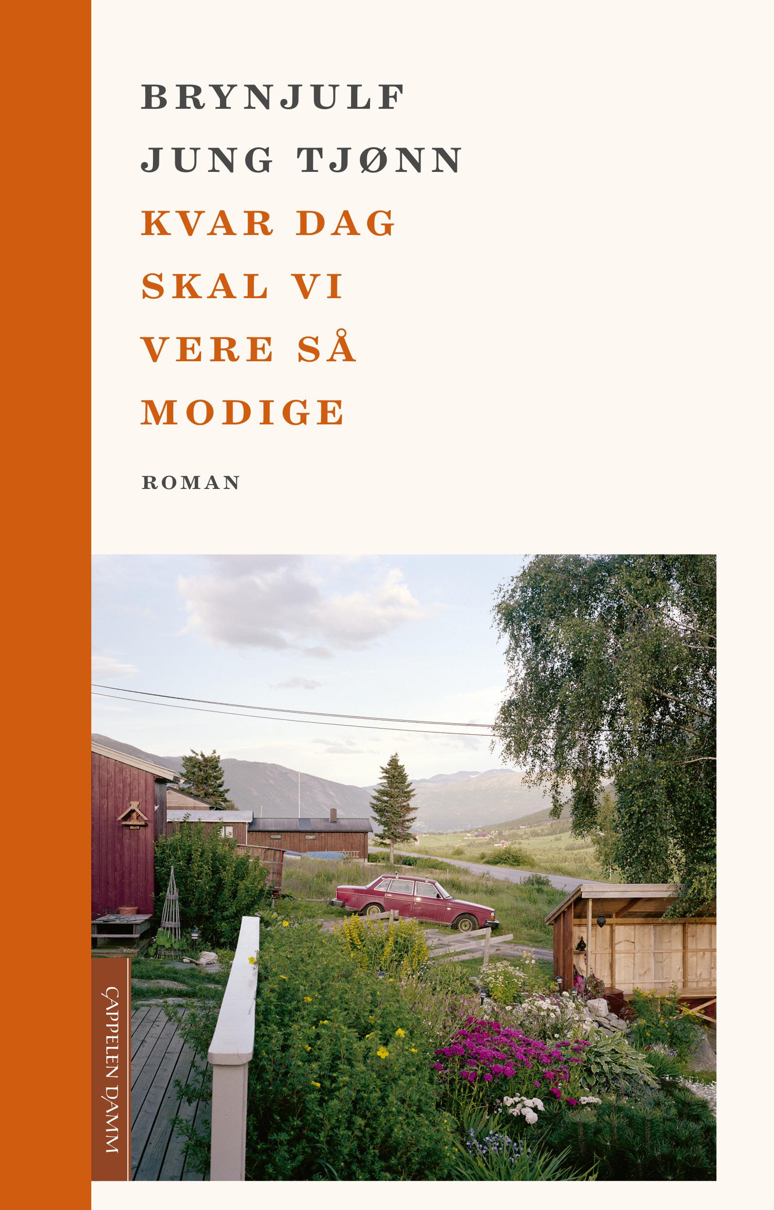 """""""Kvar dag skal vi vere så modige - roman"""" av Brynjulf Jung Tjønn"""