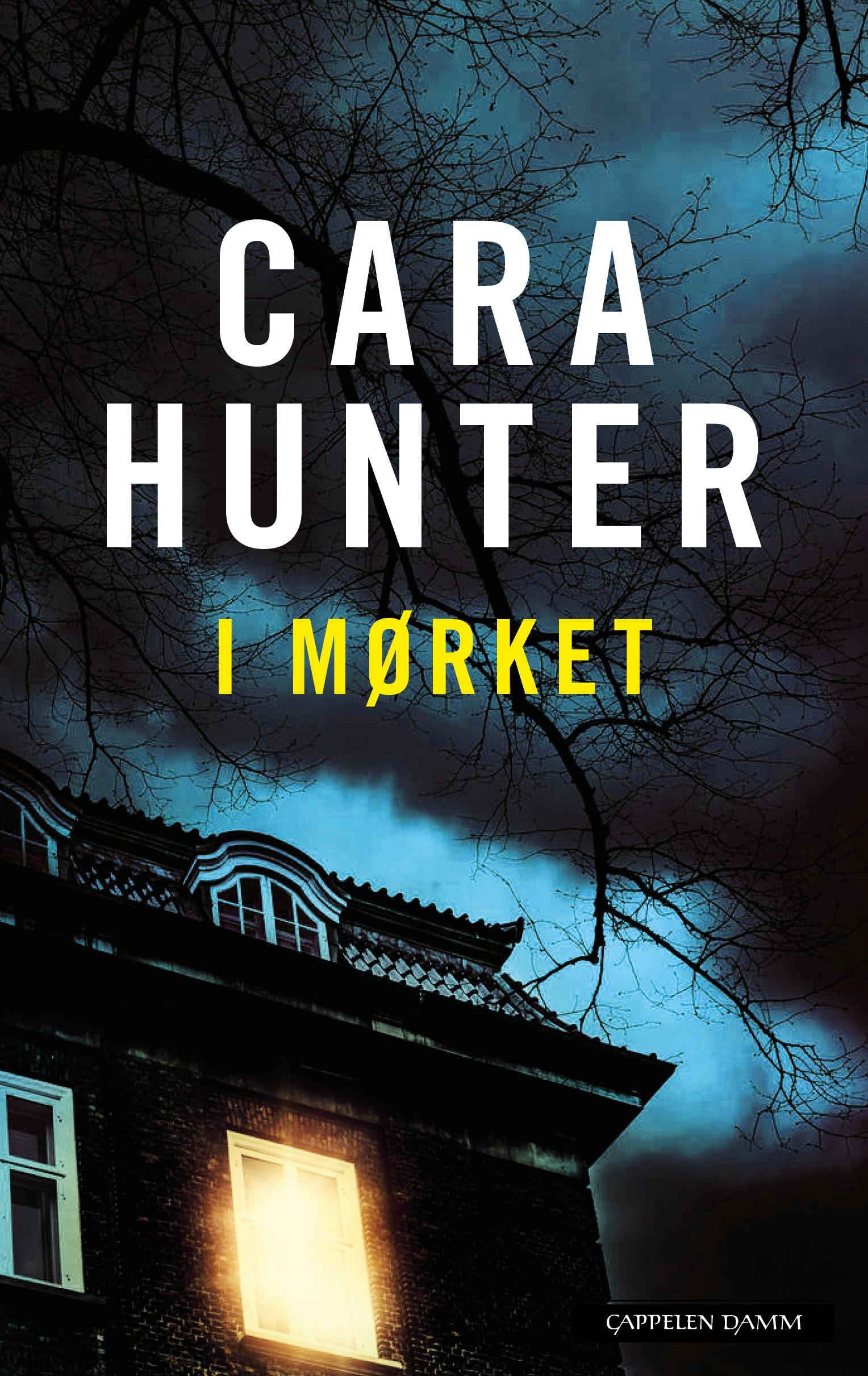 """""""I mørket"""" av Cara Hunter"""