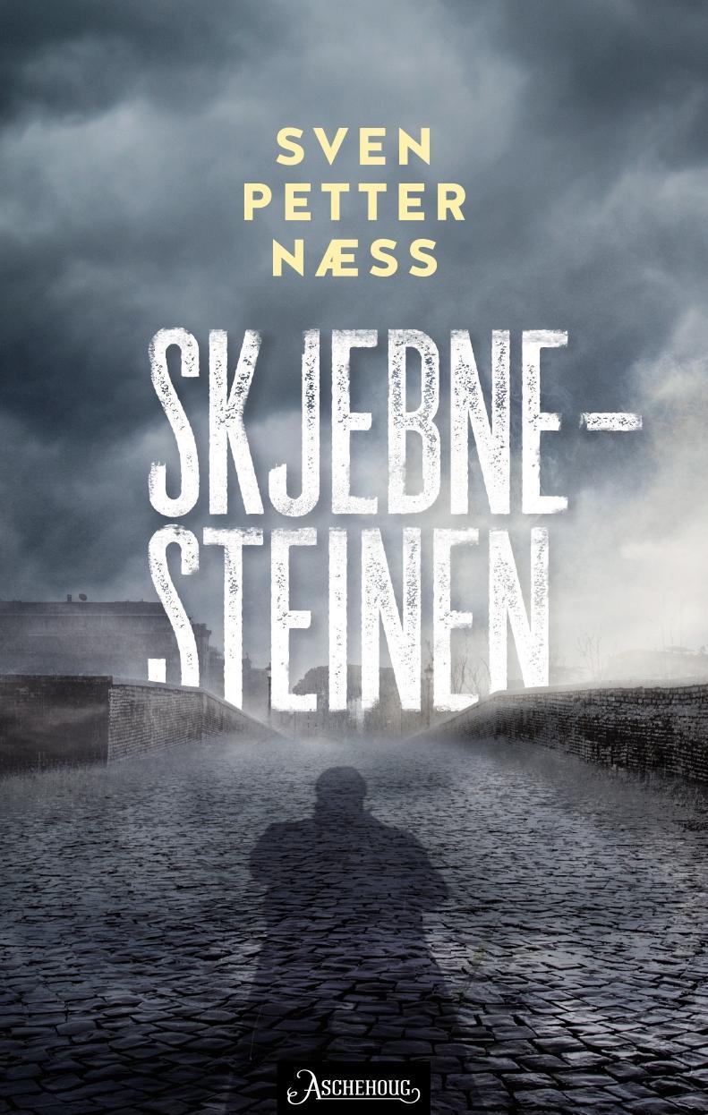 """""""Skjebnesteinen - kriminalroman"""" av Sven Petter Næss"""