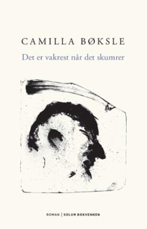 """""""Det er vakrest når det skumrer - roman"""" av Camilla Bøksle"""