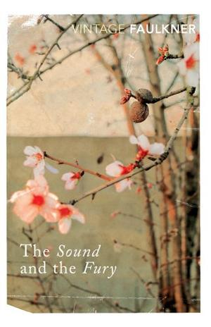"""The Sound and the Fury (Vintage Classics)"" av William Faulkner"