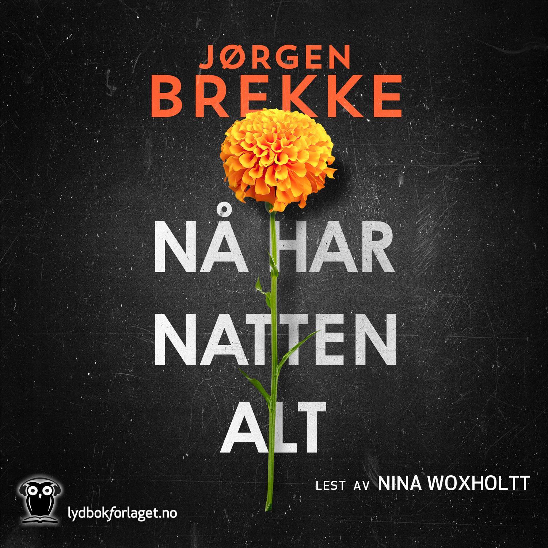 """""""Nå har natten alt - kriminalroman"""" av Jørgen Brekke"""