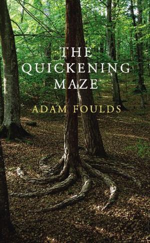 """""""The quickening maze"""" av Adam Foulds"""