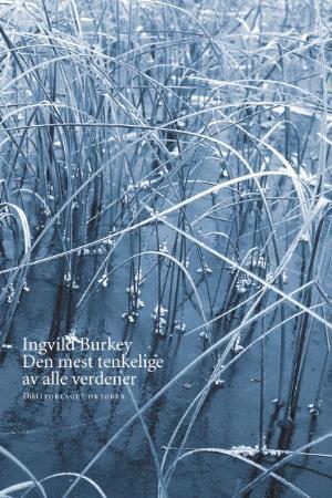 """""""Den mest tenkelige av alle verdener - dikt"""" av Ingvild Burkey"""
