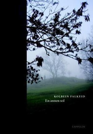 """""""En annen sol"""" av Kolbein Falkeid"""